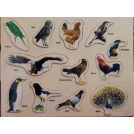 Деревянная игрушка рамка-вкладыш Птицы (на украинском языке)