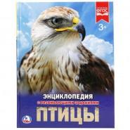 Птицы. Энциклопедия с развивающими заданиями