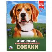 Собаки. Энциклопедия с развивающими заданиями
