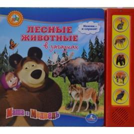 Лесные животные в загадках. Маша и медведь